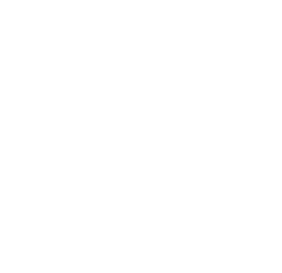 webdeveloperny web design & development company logo